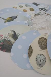 Polka Dots und Vögelchen